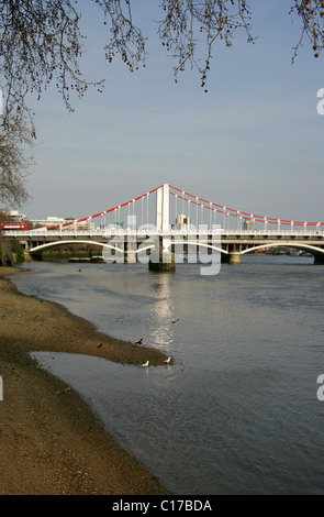 Chelsea Bridge from Chelsea Embankment, River Thames, London, UK. - Stock Image