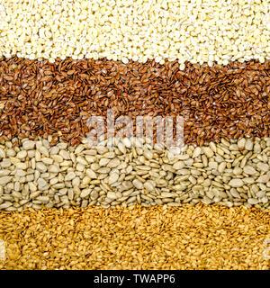 Dried Brown Linseeds Golden Linseeds Sunflower Seeds Pearl Barley Healthy Superfood Seeds or Grain - Stock Image