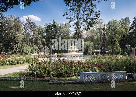 Formal rose garden and fountain inside Gorkey Park (aka The Central Park of Rest and Culture), 9, Krymskiy Val, - Stock Image
