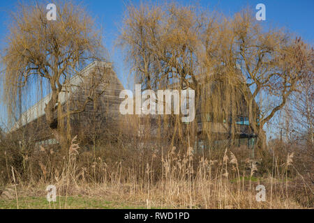 The oak clad River & Rowing Museum blends into the winter landscape at Henley-on-Thames, designed by David Chipperfield Architects. - Stock Image