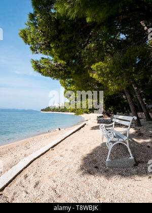 White wooden bench on empty beach under pine trees in Tucepi, Croatia - Stock Image
