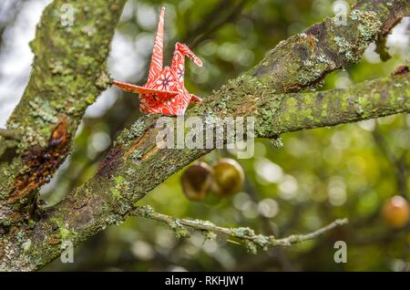 Origami paper crane made of original Japanese origami paper set up in a natural garden environment. - Stock Image