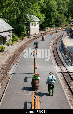 Man walking down empty platform on the Ffestiniog Railway, Tan-y-Bwlch, Gwynedd, Wales - Stock Image