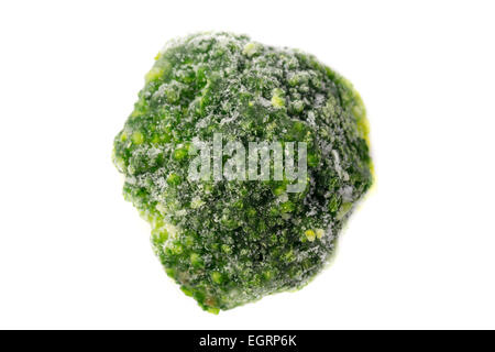 Close up picture of a frozen broccoli - Stock Image