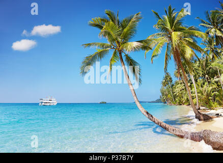 Tropical beach with palms, Kood island, Thailand - Stock Image