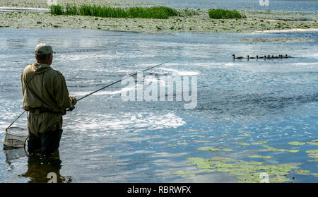 Fisherman with a fishing rod on the background of a magnificent natural landscape, a duck family with ducklings swims by - Stock Image
