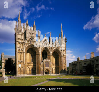 Peterborough Cathedral Cambridgeshire England UK - Stock Image