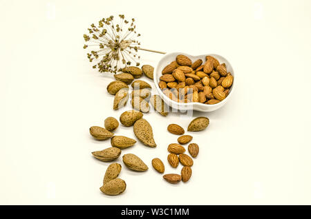 White background with seeds of unprocessed edible almonds and peeled almonds in white porcelain bowl next to dry flower - Stock Image