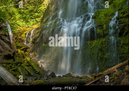 Proxy Falls in Oregon's Three Sisters Wilderness - Stock Image