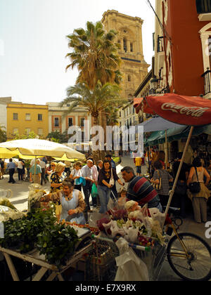 A flower stall on 'Calle Capuchinas' in Granada - Stock Image