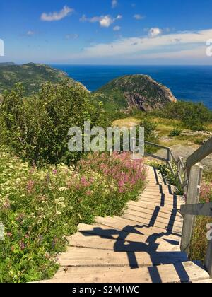 Hiking trail at Battery Point in St. John's Newfoundland Canada - Stock Image