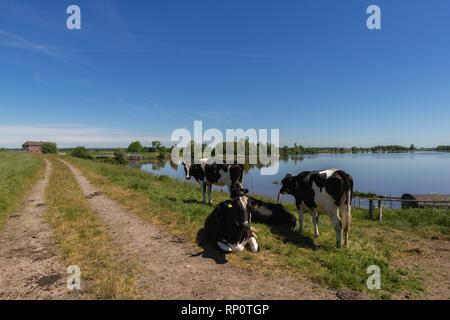 The small Eider River on a beautiful summer day, Eider-Treene-Sorge-Niederung or lowlands, Kleve, Dithmarschen, Schleswig-Holstein, Germany - Stock Image
