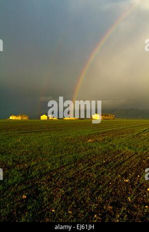 Rainbow on wheat fields, Daunia, Apulia, Italy - Stock Image