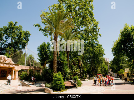 The grounds of Lisbon Zoo, with the entrance to the Tiger enclosure on the left of the image. - Stock Image