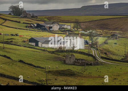 North Pennines AONB landscape, West Underhurth farm, Langdon Beck, Upper Teesdale - Stock Image
