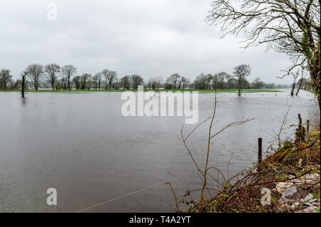 Caheragh, West Cork, Ireland. 15th Apr, 2019. Much of Ireland is currently in the midst of a Status Orange Rainfall Warning, issued by Met Éireann. Many fields in West Cork are flooded after numerous rivers burst their banks due to the torrential rain. Credit: Andy Gibson/Alamy Live News. - Stock Image
