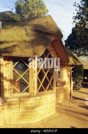 cottages and houses a street in a village uk - Stock Image