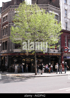 The Porcupine traditional English Pub Charing Cross Road London - Stock Image