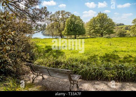 Trelissick Gardens, Trelissick, Cornwall, England, United Kingdom - Stock Image