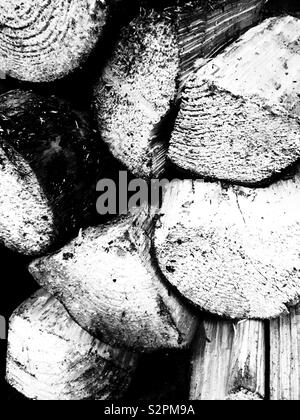 Black and white photo of logs chopped up for firewood - Stock Image