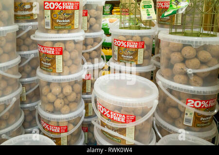 Garden Centre display of tubs of Peckish brand fat balls for attracting and feeding wild birds in the garden - Stock Image