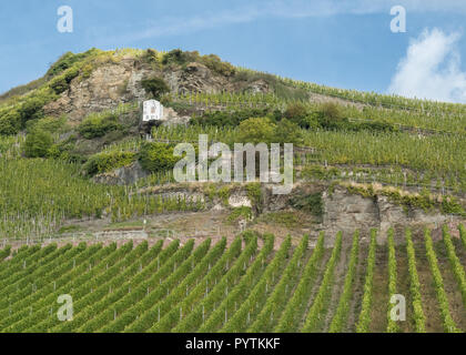 Wehlener Sonnenuhr riesling vineyard -  and The Sundial of Wehlen, Moselle valley, Germany, Europe - Stock Image