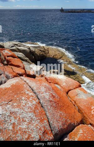 Rockpool at Sloop Reef, Bay of Fires, near St Helens, Tasmania, Australia - Stock Image