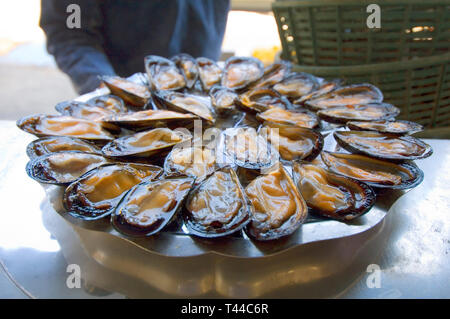 Nice Cote dAzur France - a plateful of mussels on sale in the market - Stock Image