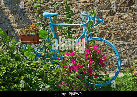 Blue painted bicycle in flower beds Saint Felicien, Ardeche, Rhonda Alps, France - Stock Image