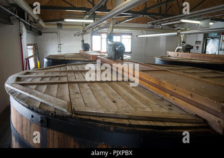 Traditional Wooden Oregon pine Wash back in Ardbeg Distillery - Stock Image