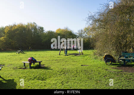 Children playing on swing in adventure playground Milton park Cambridge UK 10/11/2018 - Stock Image