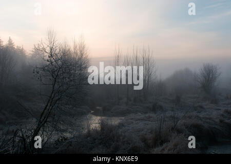 Frosty dawn in Silverdale Wetlands, Mission - Stock Image