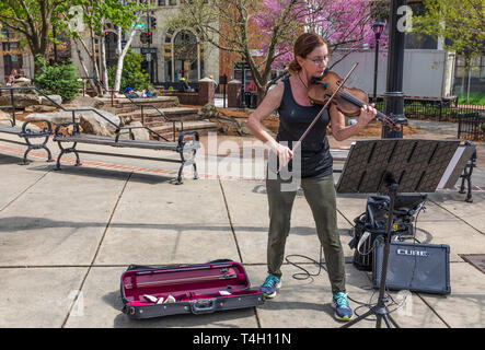 ASHEVILLE, NC, USA-4/11/19: A busker plays a violin (fiddle) in a downtown park on a sunny early spring day. - Stock Image