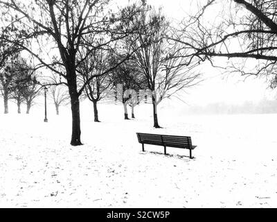 Primrose Hill, London. - Stock Image