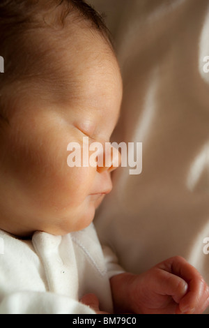 NEWBORN BABY PORTRAIT - 6 weeks premature girl weighing 5 pounds. - Stock Image