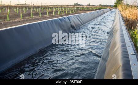 Concrete irrigation canal covered with rubber in order to improve the waterproofing, Low Guadiana Lands, Extremadura, Spain - Stock Image