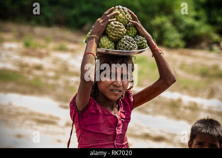 Girls selling fruits on Roadside in Rajasthan, India - Stock Image