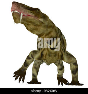Inostrancevia Dinosaur on White - Inostrancevia was a carnivorous cat-like dinosaur that lived in Russia during the Permian Period. - Stock Image