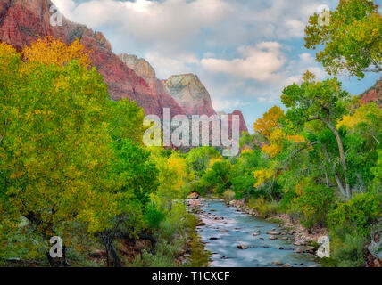 Fall color and Virgin River with sunset clouds. Zion National Park, Utah. - Stock Image