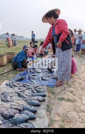 Woman buying fish at the Phaung Daw OO market, Taunggyi, Shan State, Myanmar - Stock Image