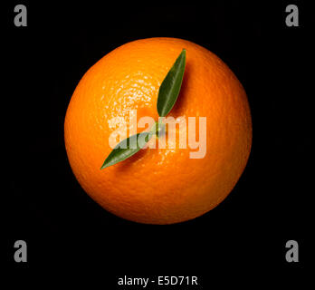 An orange shot on a black background with the leaves looking hands on a clock - Stock Image