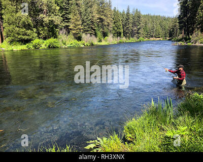 Metolius River Oregon Fly Fishing Trip with Fisherman Casting - Stock Image