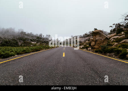Road, Mount Buffalo National Park, Victorian high country, Victoria, Australia - Stock Image