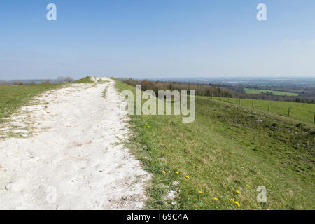 Path on the Iron-Age hill fort on St. Roche's Hill called the Trundle, Goodwood, Sussex, UK, April. South Downs National Park. - Stock Image
