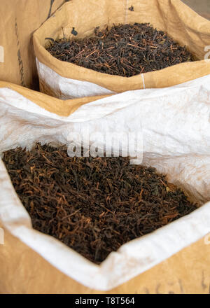 Vertical close up of loose tea at the end of the production line at a tea factory in Munnar, India. - Stock Image