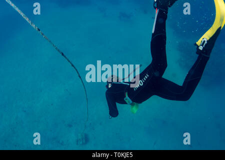 A freediver swimming to the sea bed in Egypt - Stock Image