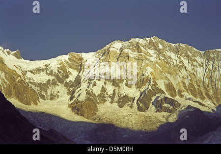 Last rays of evening sunshine on Annapurna I height 8091 metres with Baraha Shikar or Fang peak on left Nepal Himalayas - Stock Image