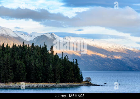 The Remarkables with trees in the foreground - Stock Image