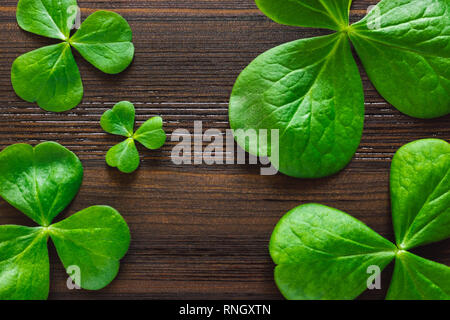 Mixed Shamrocks on Dark Wood Table with Space for Copy - Stock Image
