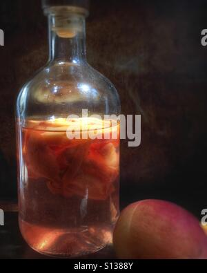 Making peach infused vodka - Stock Image